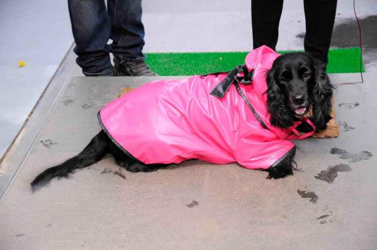 Sonya raincoat