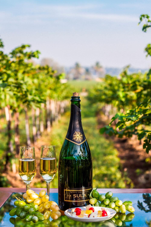 The beautiful Sula Vineyards (2).jpg