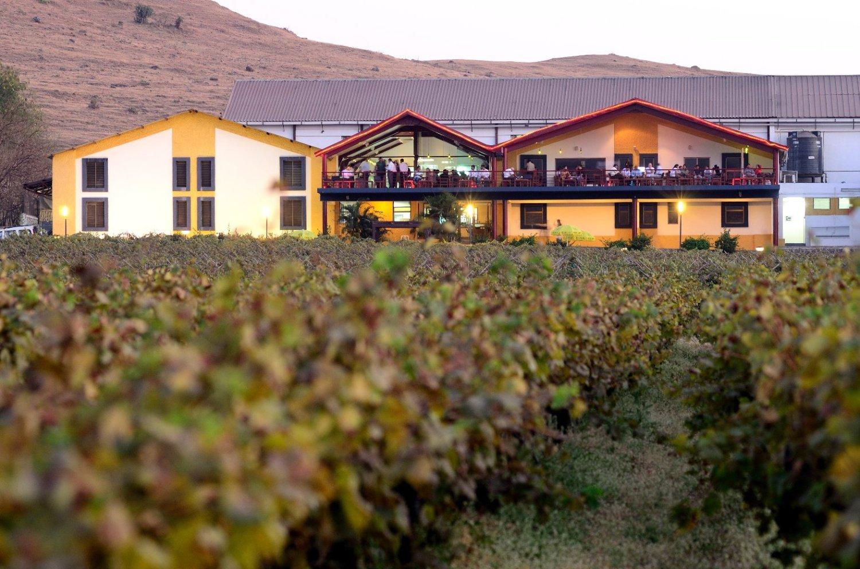 The Tasting Room, Sula Vineyards (2)